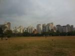 Que faire à Sao Paulo ?