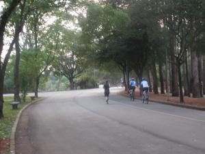 Le parc d'Ibirapuera