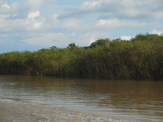 Manaus Tabatinga
