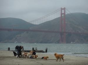 San Francisco et l'indifférence face à la pauvreté